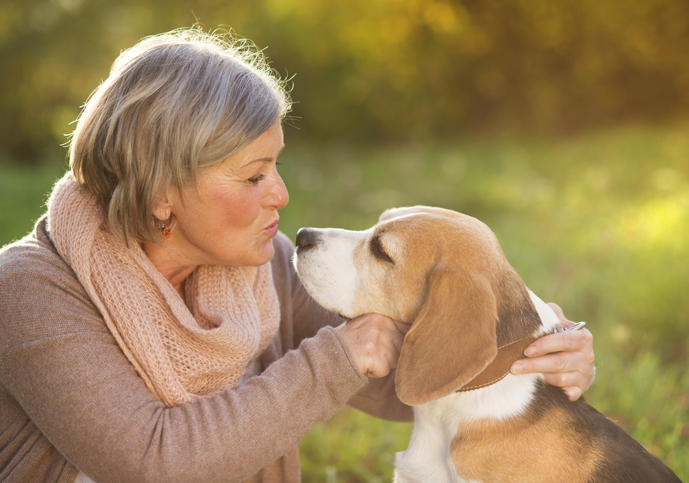Furry Friends: The Benefits of Animal Therapy